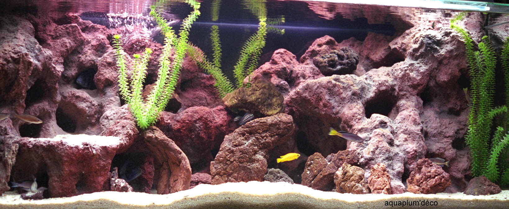 décor aquarium roche volcanique